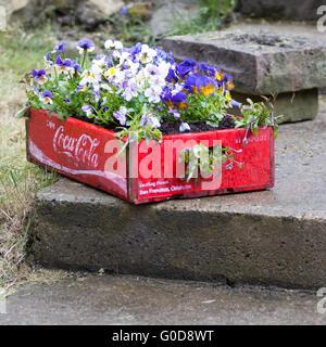 vintage Coca Cola tray Stock Photo: 65348754 - Alamy
