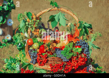 Harvest vegetables, fruits, berries sold at the fa - Stock Photo