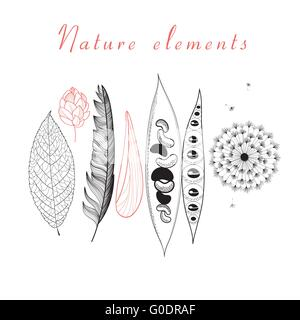 Natural set of different objects - Stock Photo