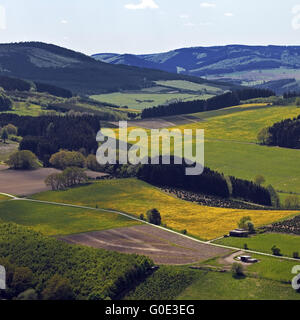 low mountain scenery near Bruchhausen, Olsberg - Stock Photo