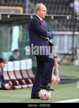 Udine, Italy. 30th April, 2016. Torino's Head Coach Giampiero Ventura during the Italian Serie A football match - Stock Photo