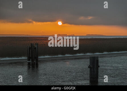 The Baltic Sea - evening light at the Bodstedter Bodden - Stock Photo