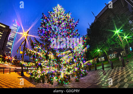 ... christmas tree near panther stadium in charlotte north carolina - Stock Photo & christmas tree near panther stadium in charlotte north carolina ... azcodes.com