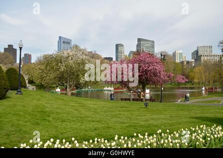 ... Landscape Of Bostonu0027s Public Garden With Many Springtime Hues And The  Downtown Skyline In The Background