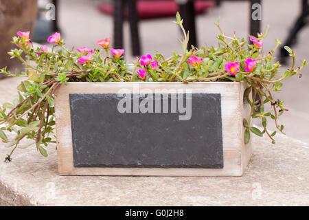 small chalkboard copyspace in decorative flower pot outdoor
