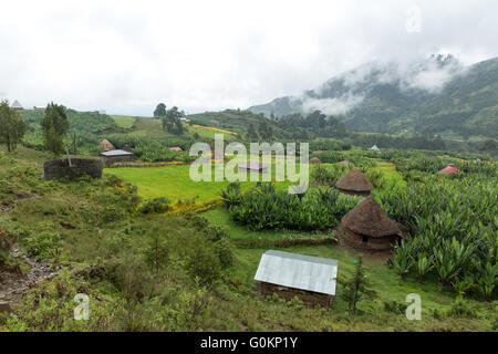Gibi village Gurage, Ethiopia, October 2013 Village landscape with Biteyu natural forest in the background. - Stock Photo