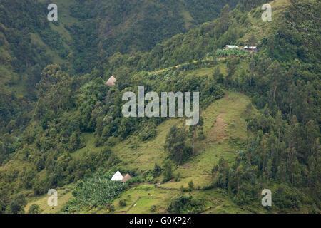 Near Gibi village, Gurage, Ethiopia, October 2013 Biteyu natural forest is already highly deforested. SUNARMA's - Stock Photo