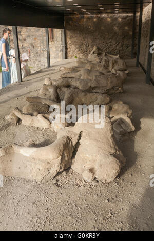 Tourist tourists in Garden of the Fugitives, viewing casts / cast of dead / fugitive body / plaster bodies of Pompeii - Stock Photo