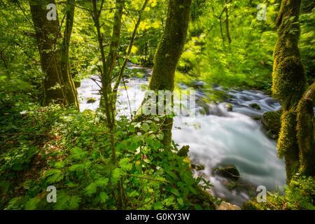 Small river Curak in Zeleni vir in Croatia longexposure scenic - Stock Photo