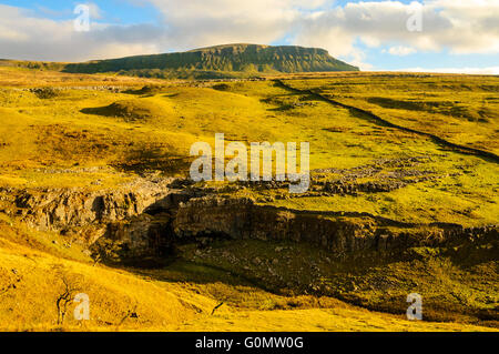 Pen-y-Ghent one of the Yorkshire Three Peaks looms over limestone outcrops - Stock Photo