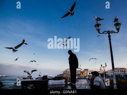 The harbour of Essaouira when the fish boats just arrive in the afternoon - Stock Photo