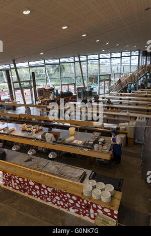 Sited between the domes of the Eden Project, Cornwall, the restaurant area offers open plan dining - Stock Photo