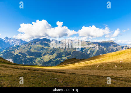 Panorama view of the Alps on Bernese Oberland and the Lauterbrunnen valley from Mannlichen station, Switzerland. - Stock Photo