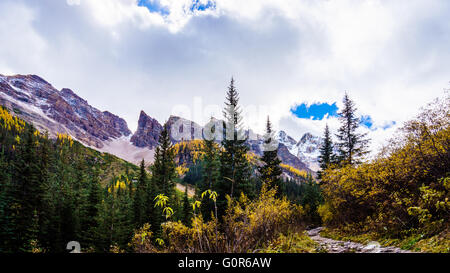Hiking through the High Alpine to the Plain of Six Glaciers in Banff National Park in the Canadian Rockies - Stock Photo
