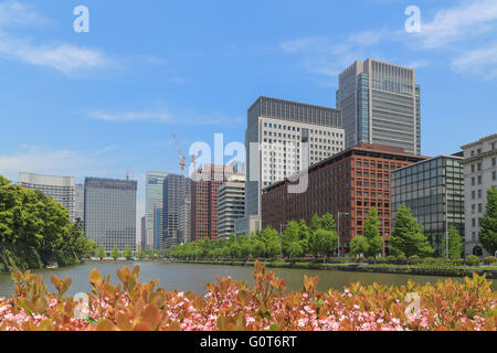 Business area of Tokyo with blue sky background. Buildings located along the street which having big pool and garden - Stock Photo