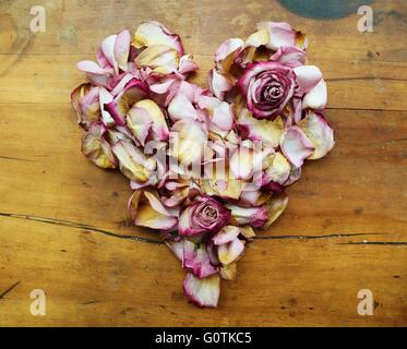 Heart shape made from pink rose petals - Stock Photo