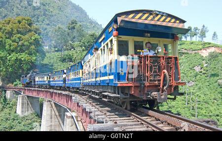 Nilgiri Mountain Railway, moving through a tea estate, Nilgiris, Tamil Nadu, India - Stock Photo