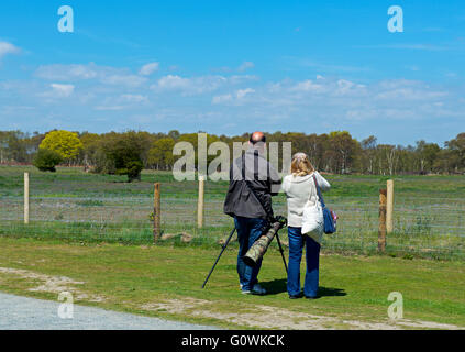 Bird watchers at Minsmere, an RSPB bird reserve, Suffolk, England UK - Stock Photo