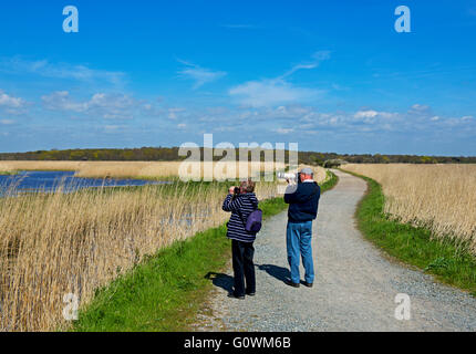 Bird watchers on track at Minsmere, an RSPB bird reserve, Suffolk, England UK - Stock Photo