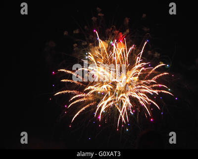 Firework at Disneyland California - Stock Photo