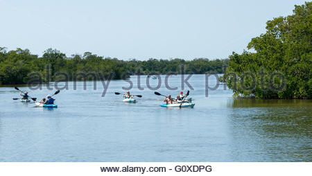 Kayakers paddle in Tarpon Bay at Ding Darling National Wildlife Refuge in Sanibel, Florida - Stock Photo