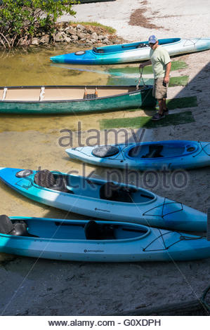 A park worker tends to the kayaks and canoe in the Tarpon Bay area at Ding Darling National Wildlife Refuge in Sanibel, - Stock Photo