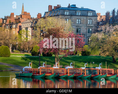 Colorful spring scene of trees blossoming with red tulips in the foreground at the Boston Public Garden in Boston, - Stock Photo