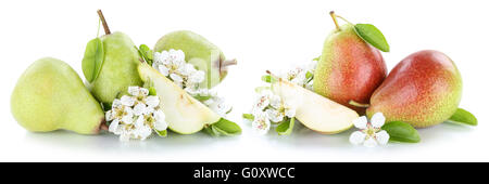 Set of pears pear fresh fruit fruits isolated on a white background - Stock Photo