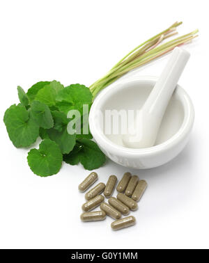 gotu kola, asiatic pennywort, centella asiatica, medicine capsule, mortar and pestle - Stock Photo