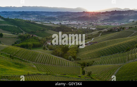 Views of the wine producing area Barbaresco in the region Piedmont in Italy - Stock Photo