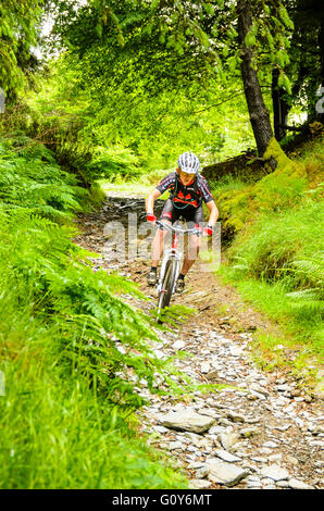 Mountain biker descending into descent into Glen Mooar in the Isle of Man - Stock Photo