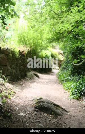 Walkway green path in countryside - Stock Photo