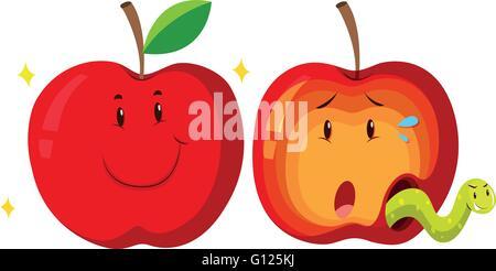 Fresh apple and rotten apple illustration - Stock Photo