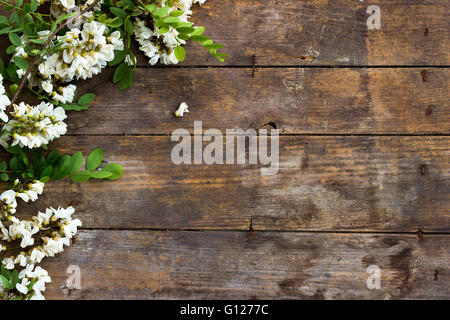 Spring acacia flower on wooden background - Stock Photo
