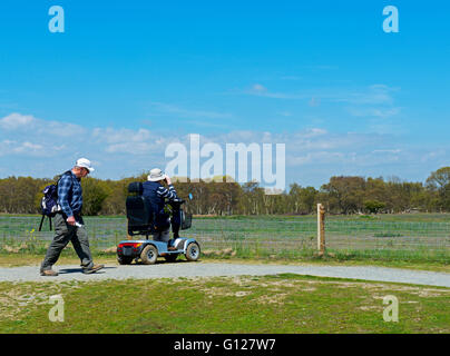 Bird watchers at Minsmere, an RSPB nature reserve in Suffolk, England uk - Stock Photo