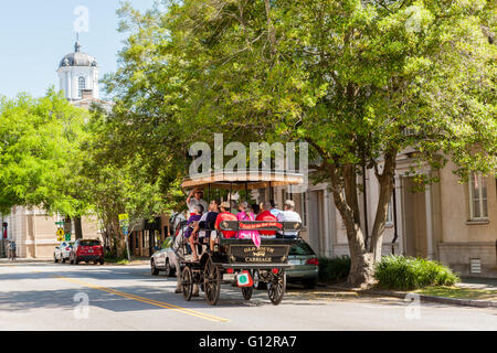 Tourists take a horse-drawn carriage tour on E Bay Street in historic Charleston, South Carolina. - Stock Photo