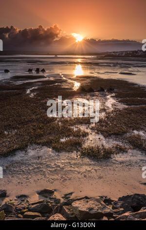 Northam Burrows Sunrise - Stock Photo