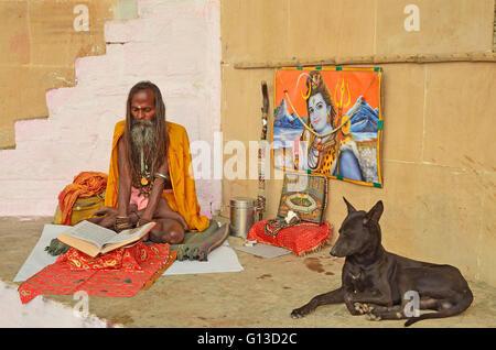 A Sadhu or Hindu saint reading the holy Gita with an image of Lord Shiva at back, Varanasi, Uttar Pradesh, India - Stock Photo