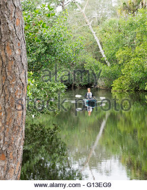 A woman kayaks on the Estero River along the Koreshan State Historic Site in Estero, Florida - Stock Photo