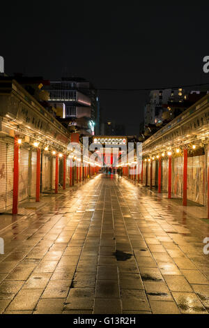 A vertical picture of Asakusa by night, in Tokyo, Japan - Stock Photo