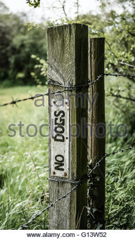 No Dogs warning sign as seen on a weathered wooden post in a rural location. - Stock Photo