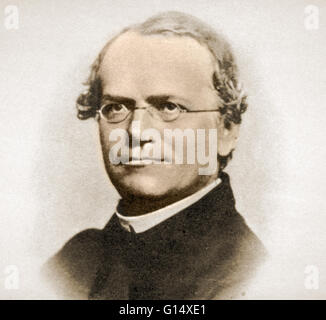 famous biologist gregor mendel Born on july 22, 1822, johann gregor mendel was a moravian scientist by occupation he was the son of a peasant and the grandson of a gardener who was initially taught be a local priest before being admitted into an institute of philosophy.