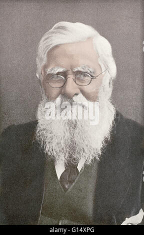 Alfred Russel Wallace (1823-1913) was a Welsh naturalist, explorer, geographer, anthropologist and biologist. He - Stock Photo