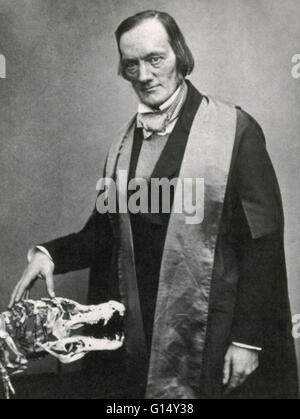 Richard Owen (1804-1892) was an English biologist, comparative anatomist and paleontologist best remembered for - Stock Photo