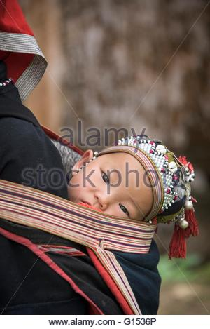 Vietnam, Sapa, Red Zao tribe, baby on mother's back - Stock Photo