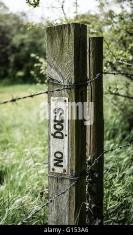 No Dogs warning sign as seen on a fence post in a rural location - Stock Photo