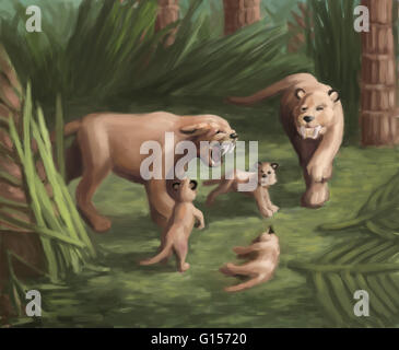 Illustration of saber-toothed cat family. The Smilodon lived during the late Pleistocene Age (Ice Age). It used - Stock Photo