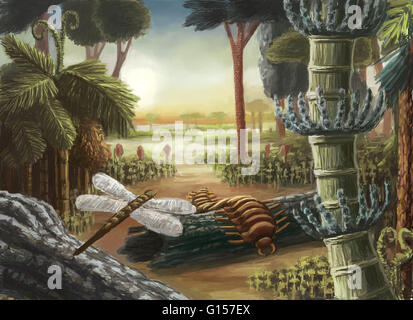 Carboniferous landscape drawing. The Carboniferous period extended from 345 to 280 million years ago and is characterized - Stock Photo