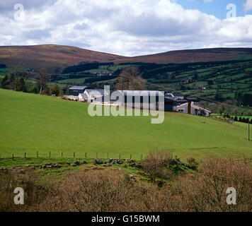 Farm in the Sperrin Mountains, County tyrone, Northern Ireland - Stock Photo
