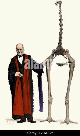 Illustration of the English paleontologist Richard Owen (July 20, 1804 - December 18, 1892) with a skeleton of a - Stock Photo